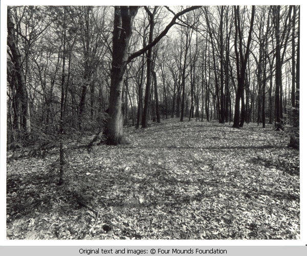 Image of the mounds from 1980s